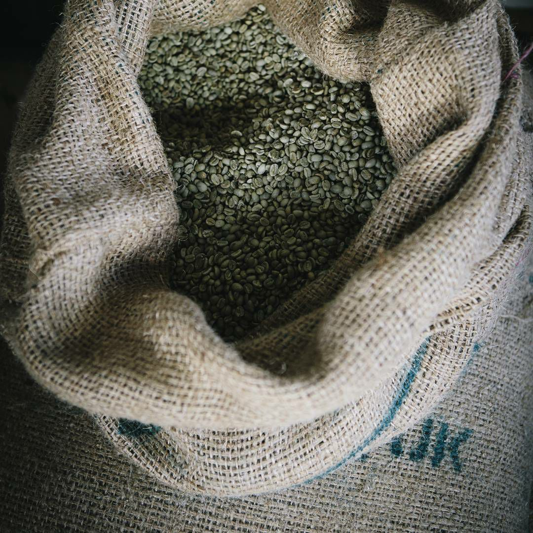 Freshly roasted Arabica coffee beans in the south of England